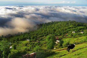 سفر به کلاردشت مازندران
